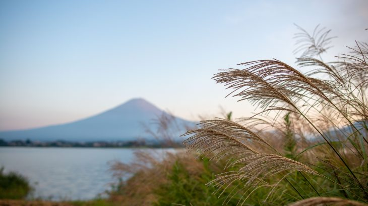 day30 日本一のフィニッシュ。